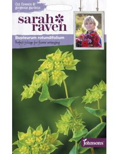 Langt planteske i rustfritstål