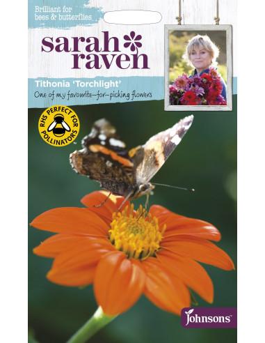Sarah Raven Tithonia 'Torchlight'