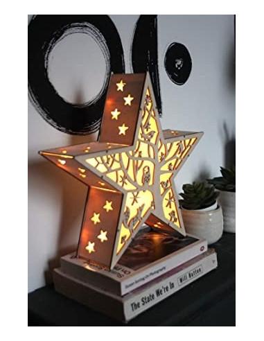 Winter star til batteri